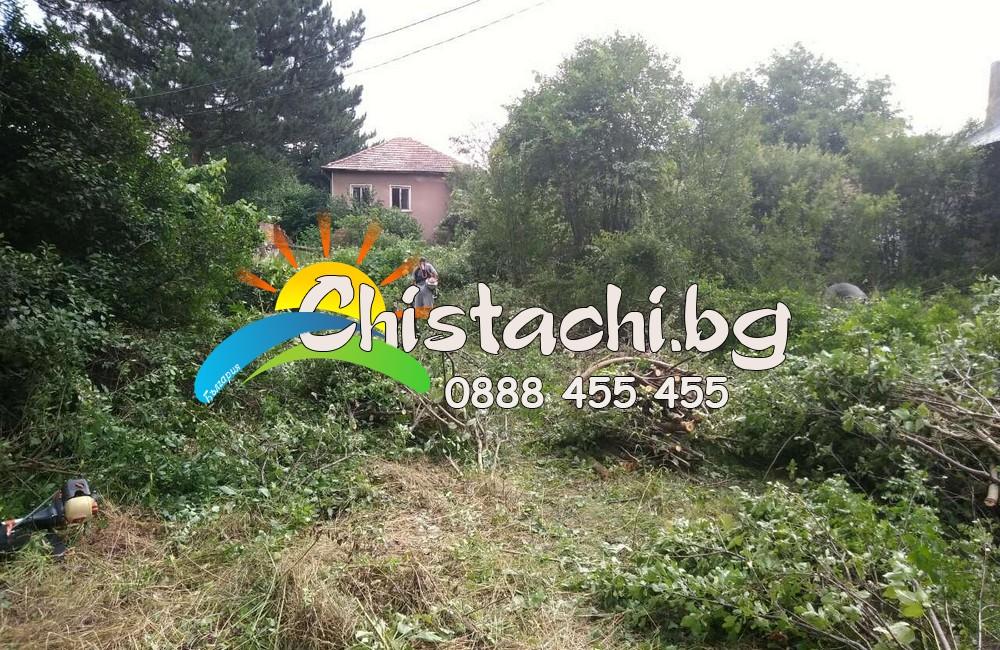 Фирма за почистване на дворове в Пловдив